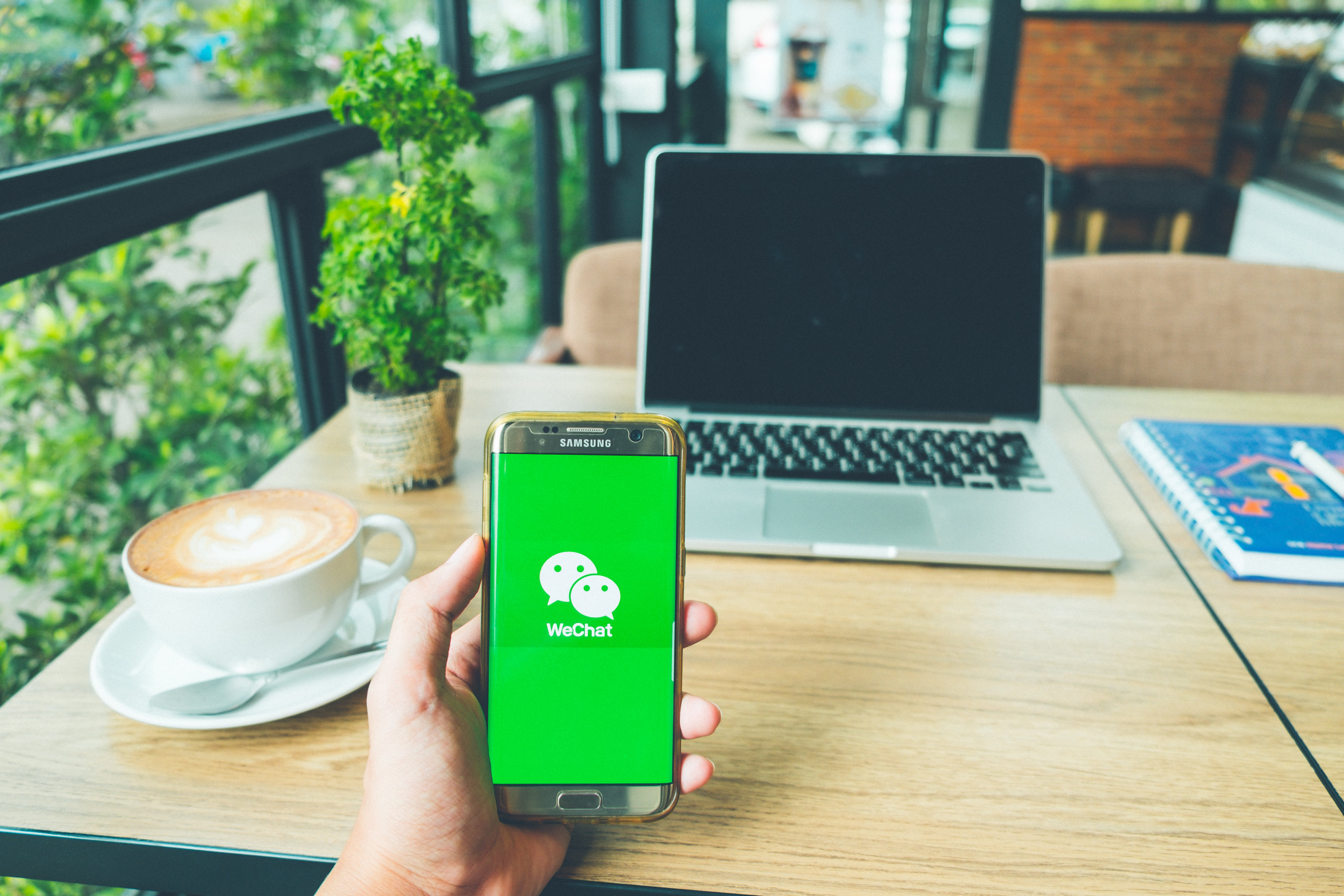 English Teaching Schools Use WeChat to Promote Courses during the Holidays